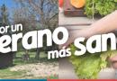 Campaña: Cuídate de la Araña de Rincón